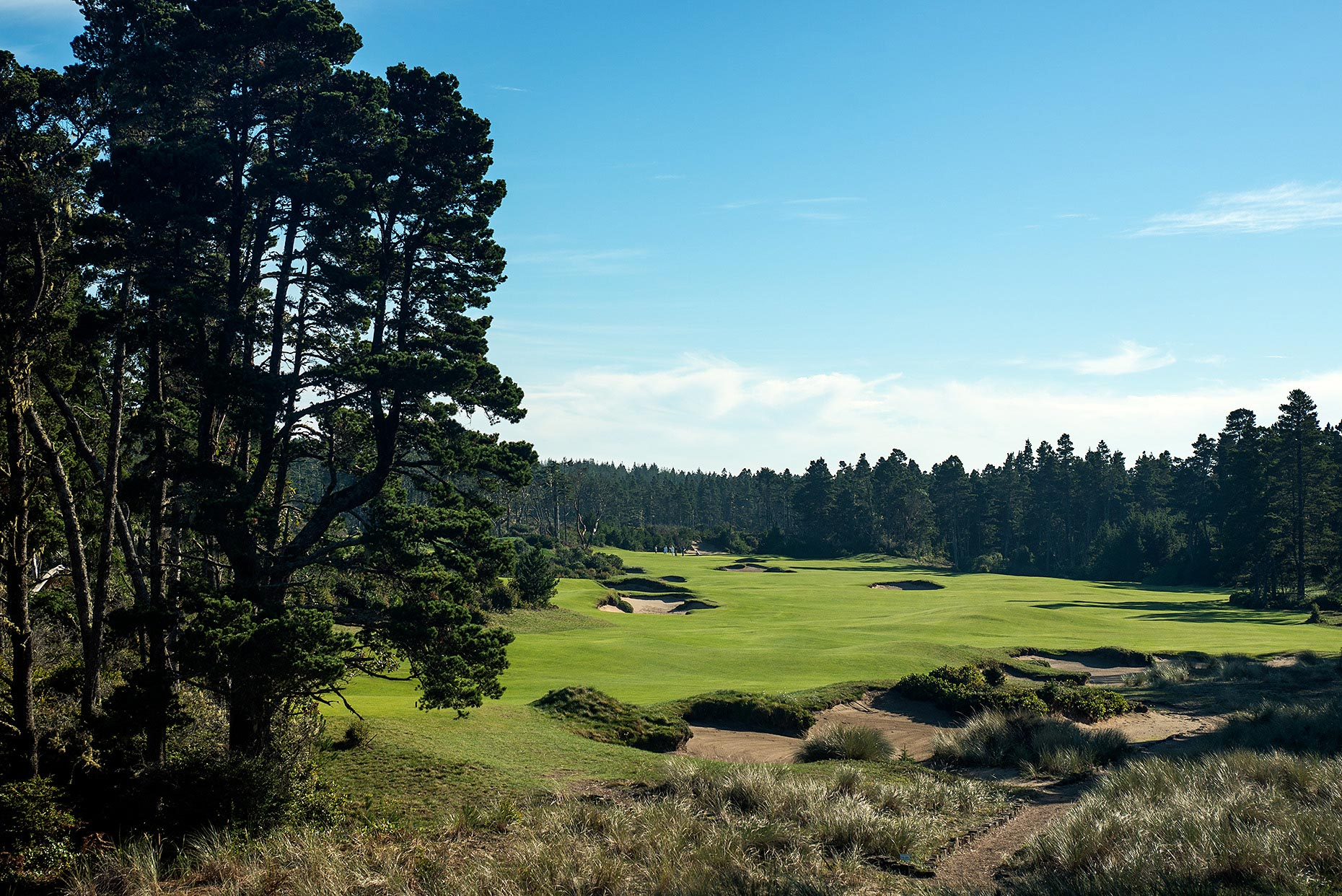141108_Bandon_Trails_3rd_hole