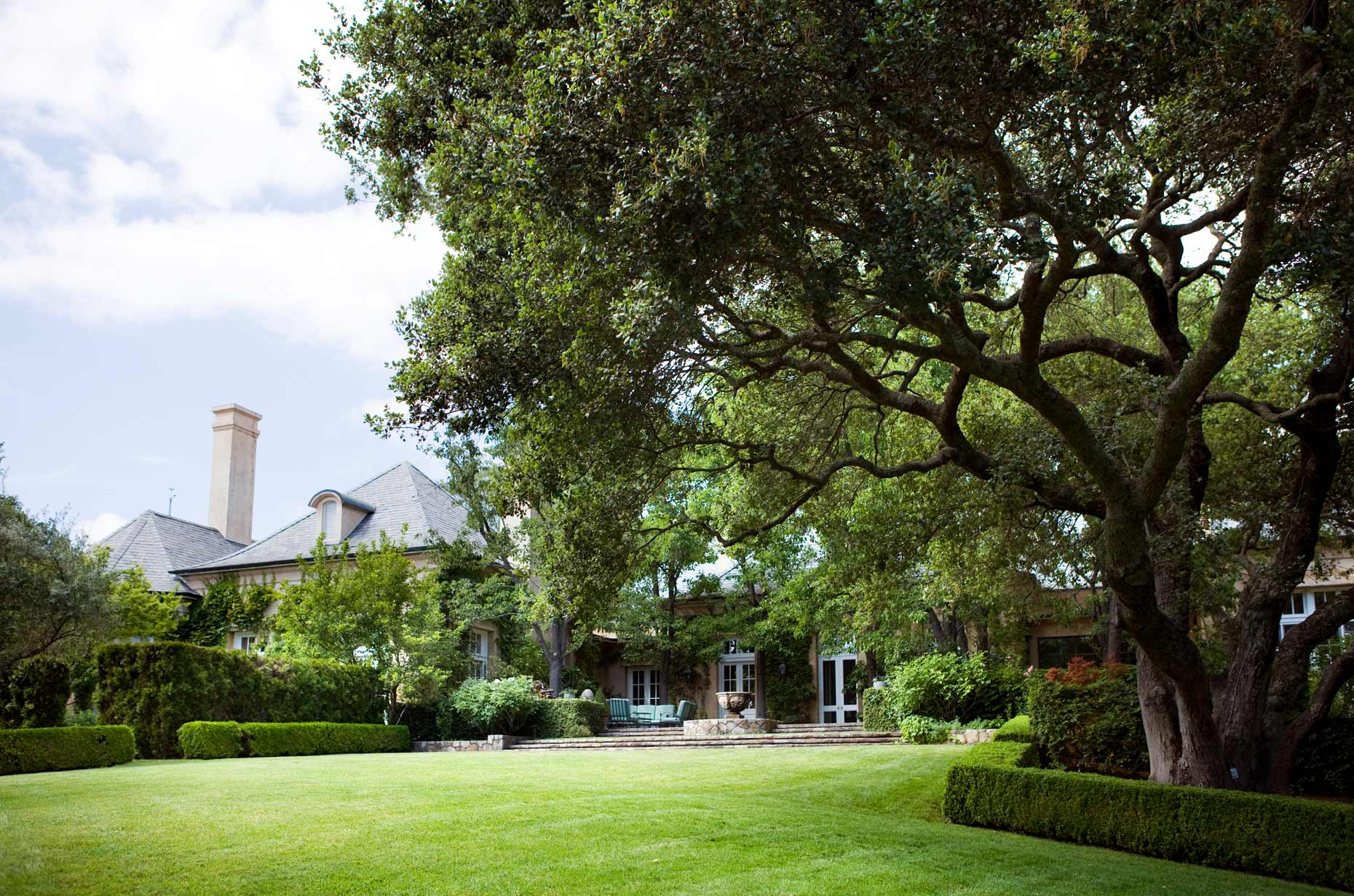 Napa_Sloan_Estate_oak_tree_lawn_6447_